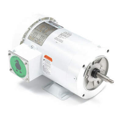 LEESON Washdown Motor,2 HP,Face/Base,3-Phase, 119461.00