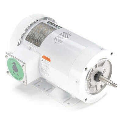 LEESON Washdown Motor,3 HP,Face/Base,3-Phase, 119463.00