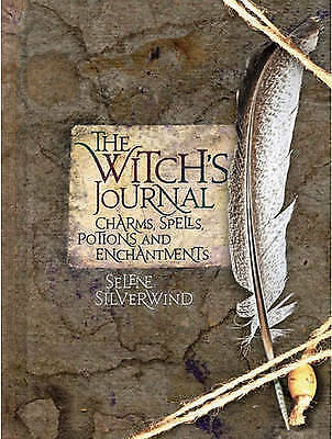The Witch's Journal - 9781845433093