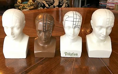 """SALE AUTHENTIC 4 3/4 - 5 1/4"""" Antique PHRENOLOGY MEDICAL HEAD 1 African RARE"""