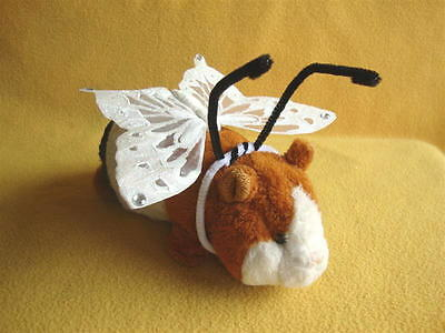 Butterfly Costume for Guinea Pig from Petrats