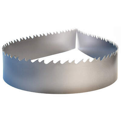 LENOX Band Saw Blade,Carbide,1 In. W, 45019TRB123810