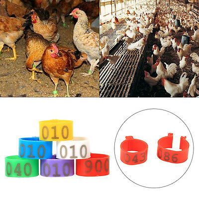 100X 16mm 20mm Clip On Leg Band Rings for Chickens Ducks Hens Poultry Large Fowl