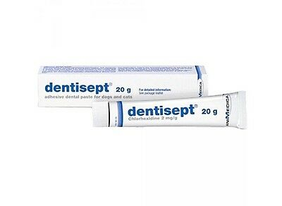 Dentisept Adhesive Oral Paste