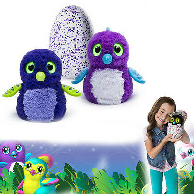 Hatchimals Interactive Pet Draggles Egg By Spin Master Magic Kid Toys