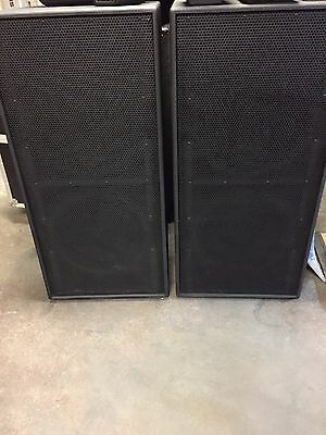 Yorkville TX9S Dual 18 inch Speakers