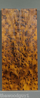 s4179  -  Moroccan THUYA  BURL - Scales / Craftwood - Kiln Dried