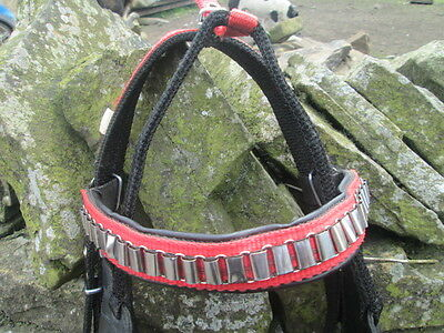 Synthetic driving bridle with red detailing & white metal fittings