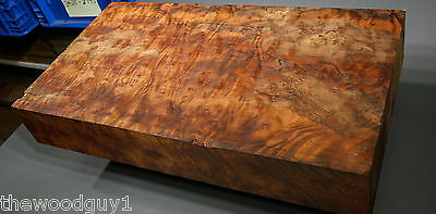 x1412  -     Large  CAMPHOR BURL   - Turning/Craftwood - Air Dried