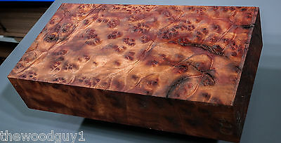 x1420  -     Large  CAMPHOR BURL   - Turning/Craftwood - Air Dried