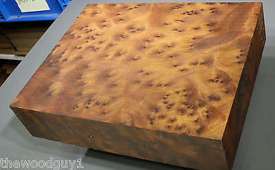 x1427  -     Large  CAMPHOR BURL   - Turning/Craftwood - Air Dried