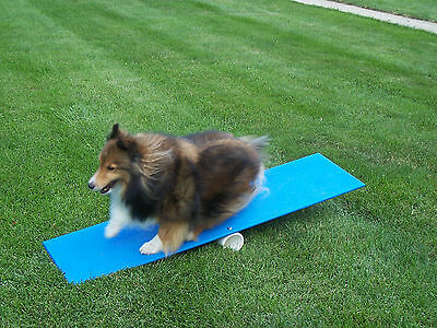 Agility Gear Teeter and Contact Teacher - Dog Agility Equipment