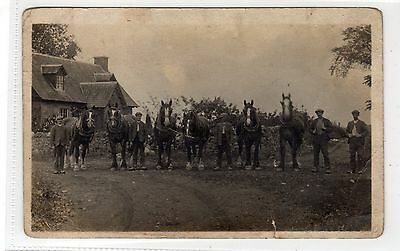 Picture postcard of working horses, Boat of Forgan, Perthshire (C28395)