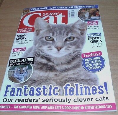 Your Cat magazine JUL 2017 Chartreux, Indoor or Out? Kitten Feeding Tips