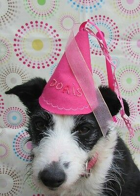 Dogs Birthday Hat Princess for a day handmade and personalized  by Mrs Nibbles