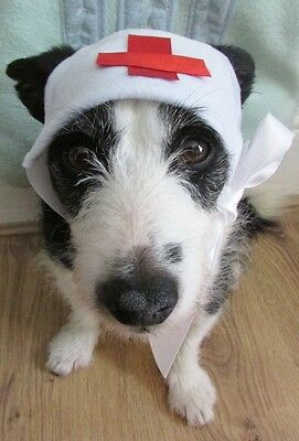 Dogs Nurse's Hat fancy dress costume hand made by Mrs Nibbles for small dogs