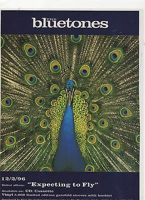 ☆☆ THE BLUETONES EXPECTING TO FLY CD MC RARE MAGAZINE A4 Poster  ☆☆ 004