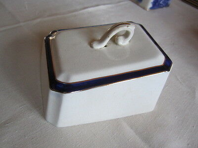 White and Blue cheese dish cover