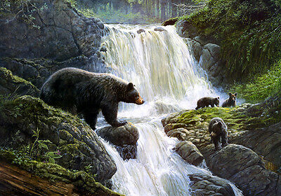 HD Art Print Animals Bear in the waterfall Oil painting Printed on canvas L457