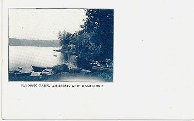 Lake Baboosic New Hampshire postcard  Amherst NH  c1905  THE PARK   Merrimack NH