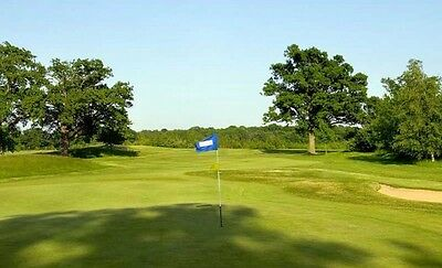 Golf * 4 Ball Round Of Golf * Milford Haven Golf Club * Pembs * Charity Auction