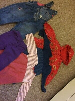 12-18 Month Girls Bundle Mainly From Next