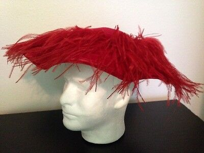 Vintage Woman's Cartwheel Hat Pancake Style Velvet Flamingo Peacock Feathers