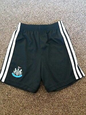 adidas boys newcastle united shorts age 5-6 years