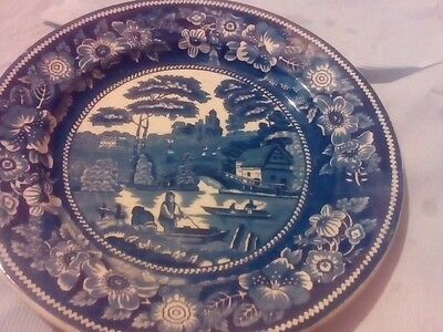 Blue and white plate,wild rosa.