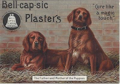 Bell-Cap-Sic Plasters, Cure Like A Magic Touch,j.m.grosvenor & Co. Boston