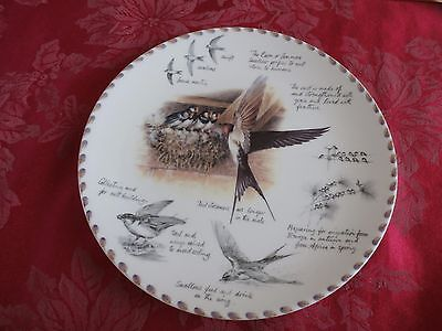 Wedgwood the Birdwatcher's notebook collector's plate by Eric Robson the Swallow