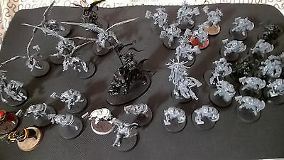 Large Age of Sigmar Stormcast Eternals army