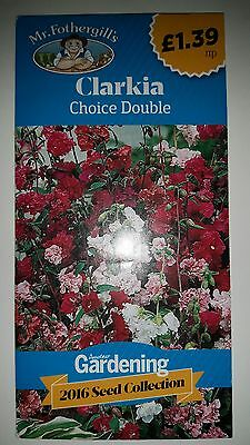 Mr. Fothergill's Seeds ~ Clarkia ~ Choice Double ♡♡♡ new & unopened ☆☆☆