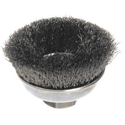 WEILER Crimped Wire Cup Brush,3-1/2 In., 93023