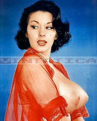 Vintage Busty Female Nude Risque Pinup Photo 8X10 Print E411 1939-1969