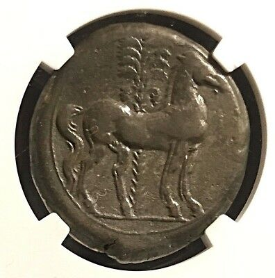 Carthage Ancient Greek Silver Billon Double Shekel NGC 11.5g Exquisite