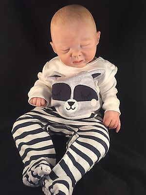 Reborn Doll Completed Beautiful Baby Newborn Was Robin By Michelle Fagan