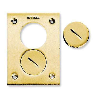 HUBBELL WIRING DEVICE-KELLEMS Floor Box Cover,Rectangular,2-Gang,Brass, S3625