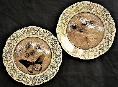 1940s RETRO KITSCH SHABBY CHIC LACE & BUTTERFLY WOODS WARE WALL PLATE GLASS DOME