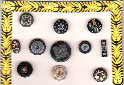 11 INLAY HORN ANTIQUE BUTTONS w METAL TRIM & FLUSH WITH THE SURFACE