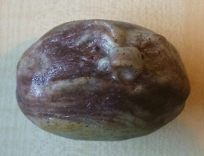 3 TRAVELLING LIVINGSTONES: Captured in Cornwall - Resin Pebble with Face -  NEW.