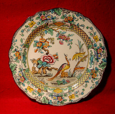 VINTAGE ROYAL DOULTON BIRD OF PARADISE PLATE marked D2775