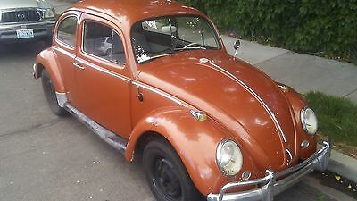 1964 Volkswagen Beetle - Classic  1964 beetle vw bug runs great clean classic solid rare stock complete vintage