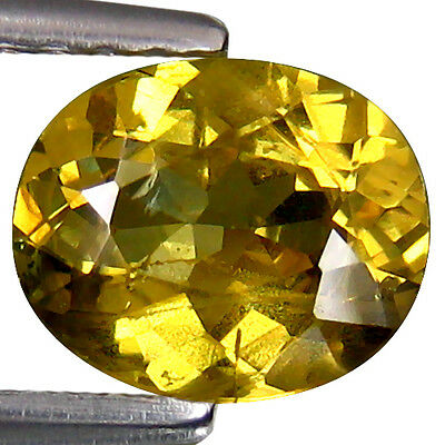 1.05Cts! Extraordinary Natural Grossular Garnet Oval From Africa Loose Gemstone!