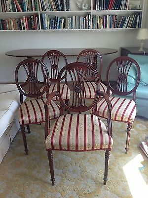 Mahogany Regency Style Dining Chairs-Bought in 1950s(matching table available)