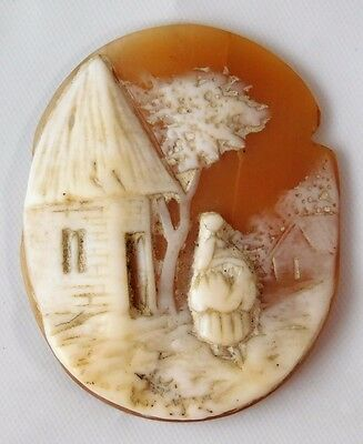 Atq Victorian Shell Carved Scenic Cameo