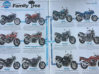 Suzuki Gsf Bandit 250 - 1200 - Original 2 Page Motorcycle Article / Family Tree