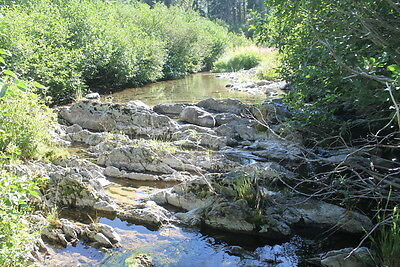 Jamison Creek 20 Acre Placer Gold Mining Claims Equipment Land Johnsville, CA