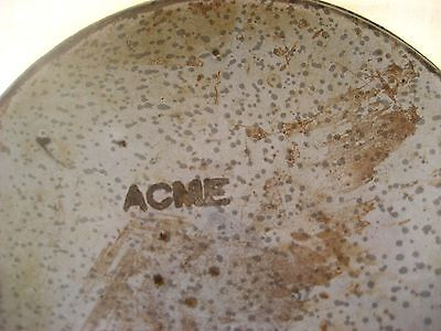"Antique gray graniteware shallow pan signed ""ACME"" 9""D"