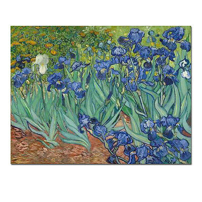Canvas Print Wall Art Home Decor Irises Van Gogh Painting Repro Picture Framed